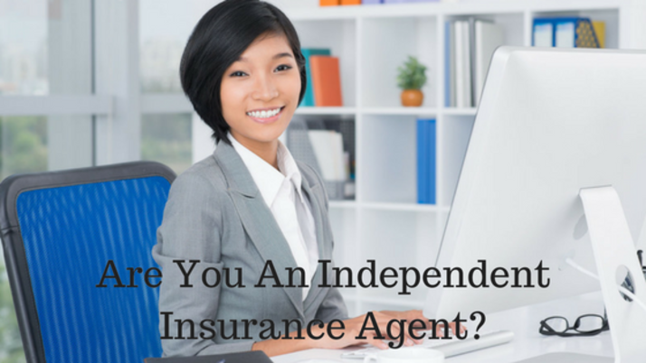 How Independent Insurance Agents Can Use Language Services to Expand